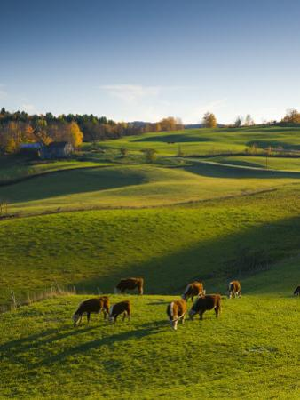 Jenne Farm, Nr Woodstock, Vermont, USA by Alan Copson
