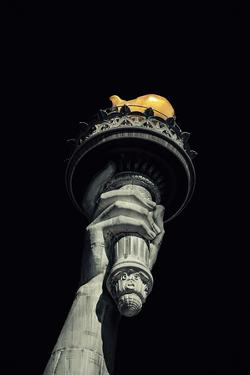 Liberty's Flame by Alan Copson