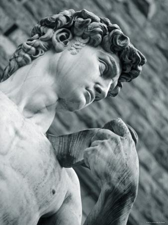 Statue of David, Florence, Tuscany, Italy by Alan Copson