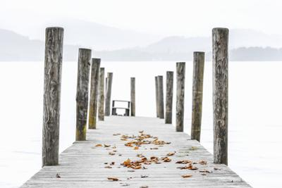 UK, England, Cumbria, Lake District, Keswick, Derwentwater, Ashness Jetty by Alan Copson