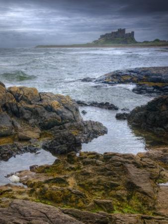 UK, England, Northumberland, Bamburgh Castle by Alan Copson