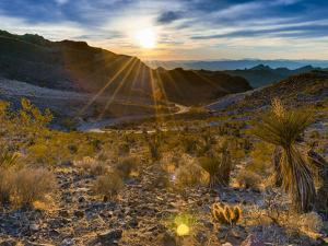 USA, Arizona, from Sitgreaves Pass on Route 66 by Alan Copson