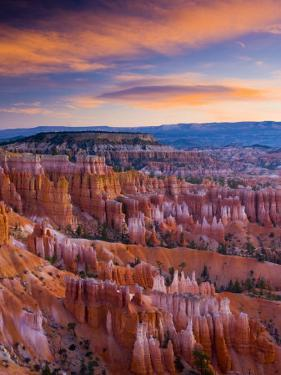 Utah, Bryce Canyon National Park, from Sunset Point, USA by Alan Copson