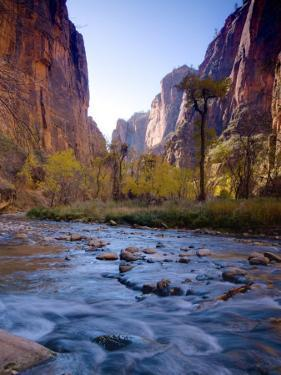 Utah, Zion National Park, the Narrows of North Fork Virgin River, USA by Alan Copson