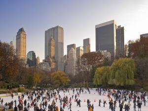Wollman Icerink at Central Park, Manhattan, New York City, USA by Alan Copson