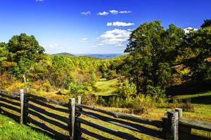 Blue Ridge Backyard by Alan Hausenflock
