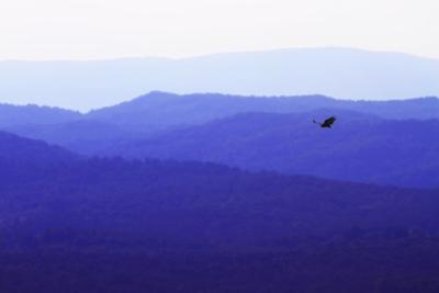 Blue Ridge I by Alan Hausenflock