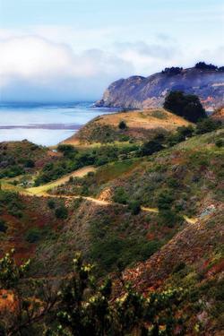 California Coast 2 by Alan Hausenflock