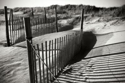 Dunes Fence IV by Alan Hausenflock