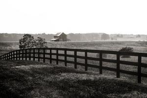 Early Morning Mist II by Alan Hausenflock