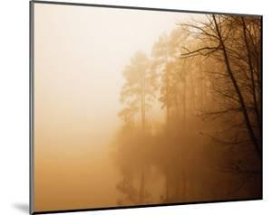 Fog on Shelly Lake I by Alan Hausenflock