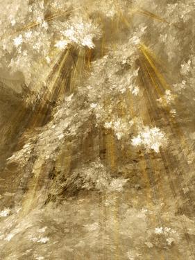 Fractal Light II by Alan Hausenflock