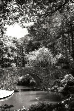 Garden Bridge I by Alan Hausenflock