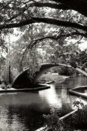 Garden Bridge II by Alan Hausenflock