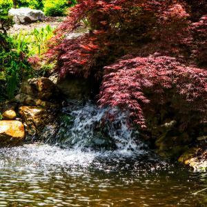 Gentle Waterfall II by Alan Hausenflock