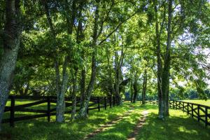 Green Springs Farm III by Alan Hausenflock