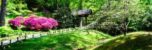Japanese Garden I by Alan Hausenflock