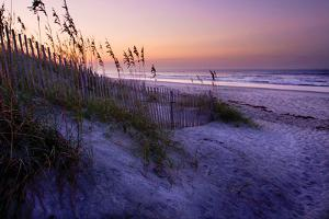 Lavender Beach I by Alan Hausenflock