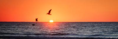 Masonboro Inlet Sunrise I by Alan Hausenflock
