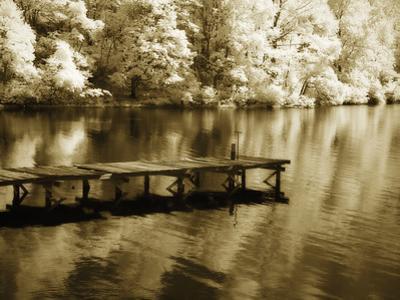 Mint Springs Lake III