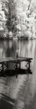 Mint Springs Lake Panel I by Alan Hausenflock
