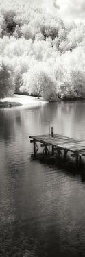 Mint Springs Lake Panel II by Alan Hausenflock