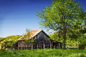 Old Backyard Barn by Alan Hausenflock