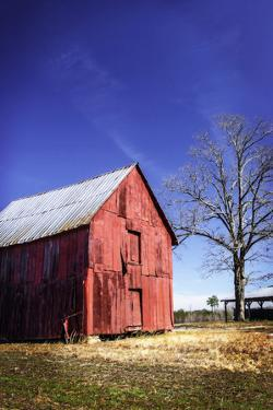 Old Tobacco Barn III by Alan Hausenflock