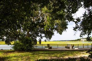 Pauley Island IV by Alan Hausenflock