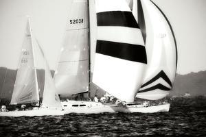 Race on the Chesapeake I by Alan Hausenflock