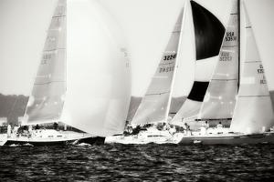Race on the Chesapeake II by Alan Hausenflock