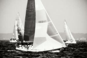Race on the Chesapeake IV by Alan Hausenflock