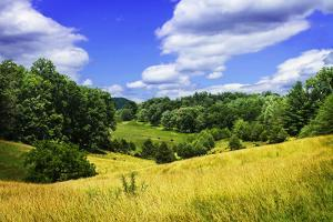 Rappahannock County IV by Alan Hausenflock