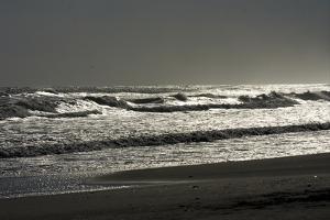 Silver Sea II by Alan Hausenflock