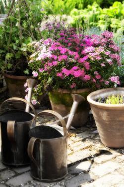The Garden Nook III by Alan Hausenflock