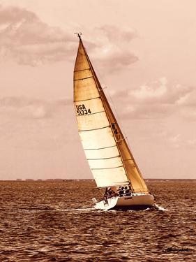 Weekend Sail II by Alan Hausenflock