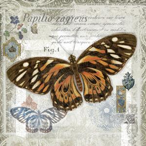 Butterfly Artifact I by Alan Hopfensperger
