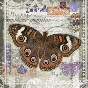 Butterfly Artifact II by Alan Hopfensperger