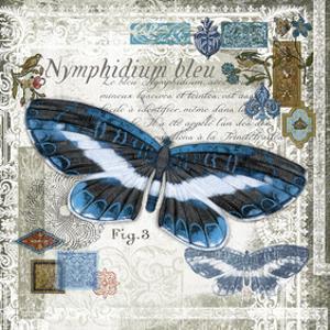 Butterfly Artifact III by Alan Hopfensperger