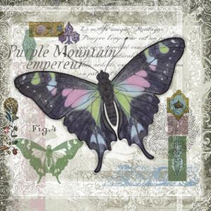 Butterfly Artifact IV by Alan Hopfensperger