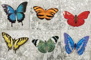 Butterfly Mural by Alan Hopfensperger