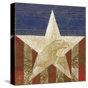 Stars&Stripes by Alan Hopfensperger