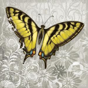 Yellow Butterfly by Alan Hopfensperger
