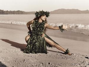 Dance of the Turtle, Hawaiian Hula Dancer by Alan Houghton