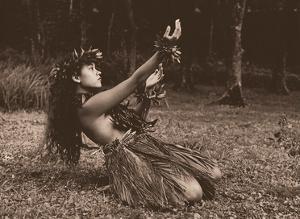 Hawaiian Hula - Dance To Aina (The Land) by Alan Houghton