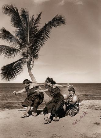 Hula Dancers on the Beach, Hawai'i by Alan Houghton