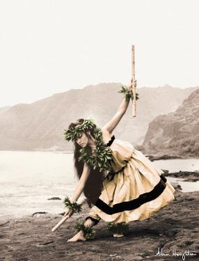 Pua with Sticks, Hawaiian Hula Dancer by Alan Houghton