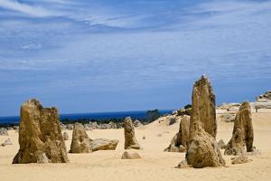 Limestone Pillars in the Pinnacle Desert by Alan J. S. Weaving