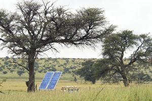 Solar Panel for Powering Water Pump at Waterhole by Alan J. S. Weaving