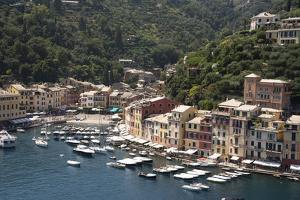 Italy, Genoa province, Portofino. Fishing village on the Ligurian Sea, overlooking harbor by Alan Klehr